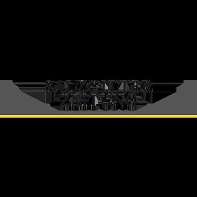 Salzgitter Zeitung Logo