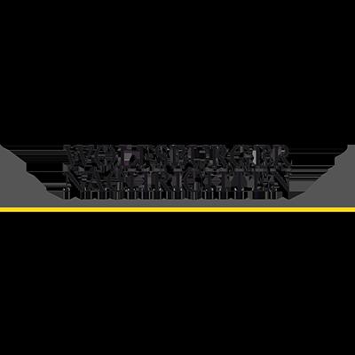 Wolfsburger Nachrichten Logo